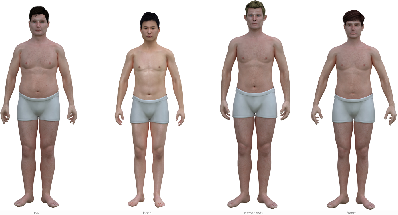 What proportions of the body are considered ideal for men