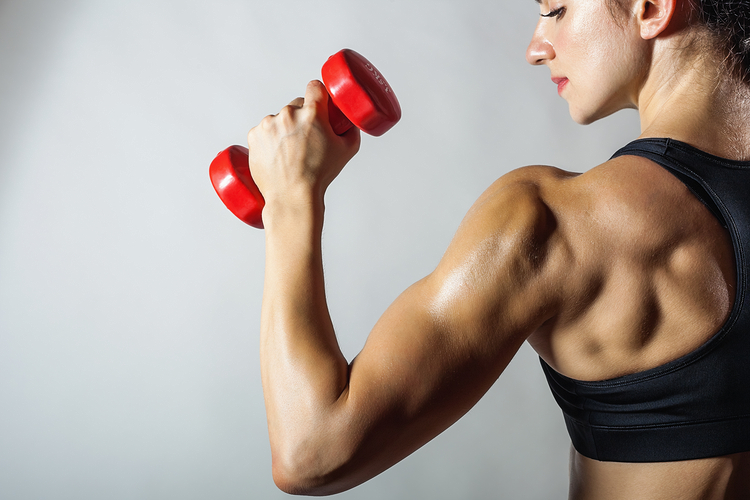 back and bicep workout at home