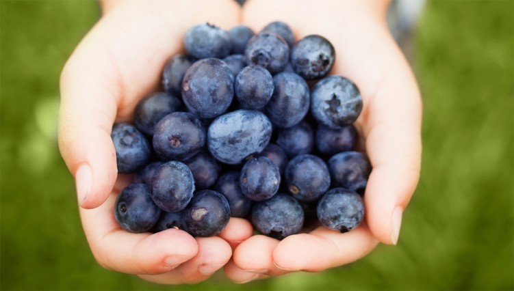 benefit of blueberries